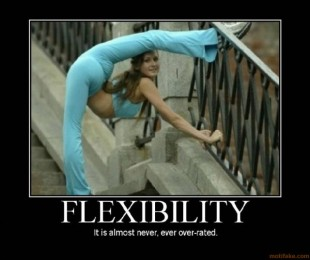 Flexibility (Motivator)