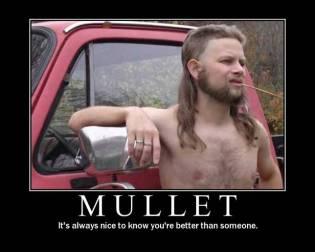 Mullet (Motivator)