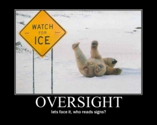 Oversight (Motivator)