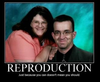 Reproduction (Motivator)