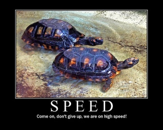 Speed (Motivator)