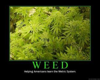 Weed (Motivator)