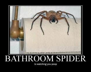 Is watching you poop