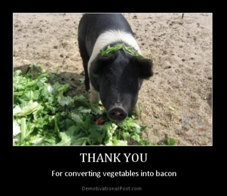 For converting vegetables into bacon
