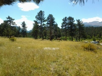 Rocky Mountain National Park, Estes Park, Colrado, Sep 7, 2014